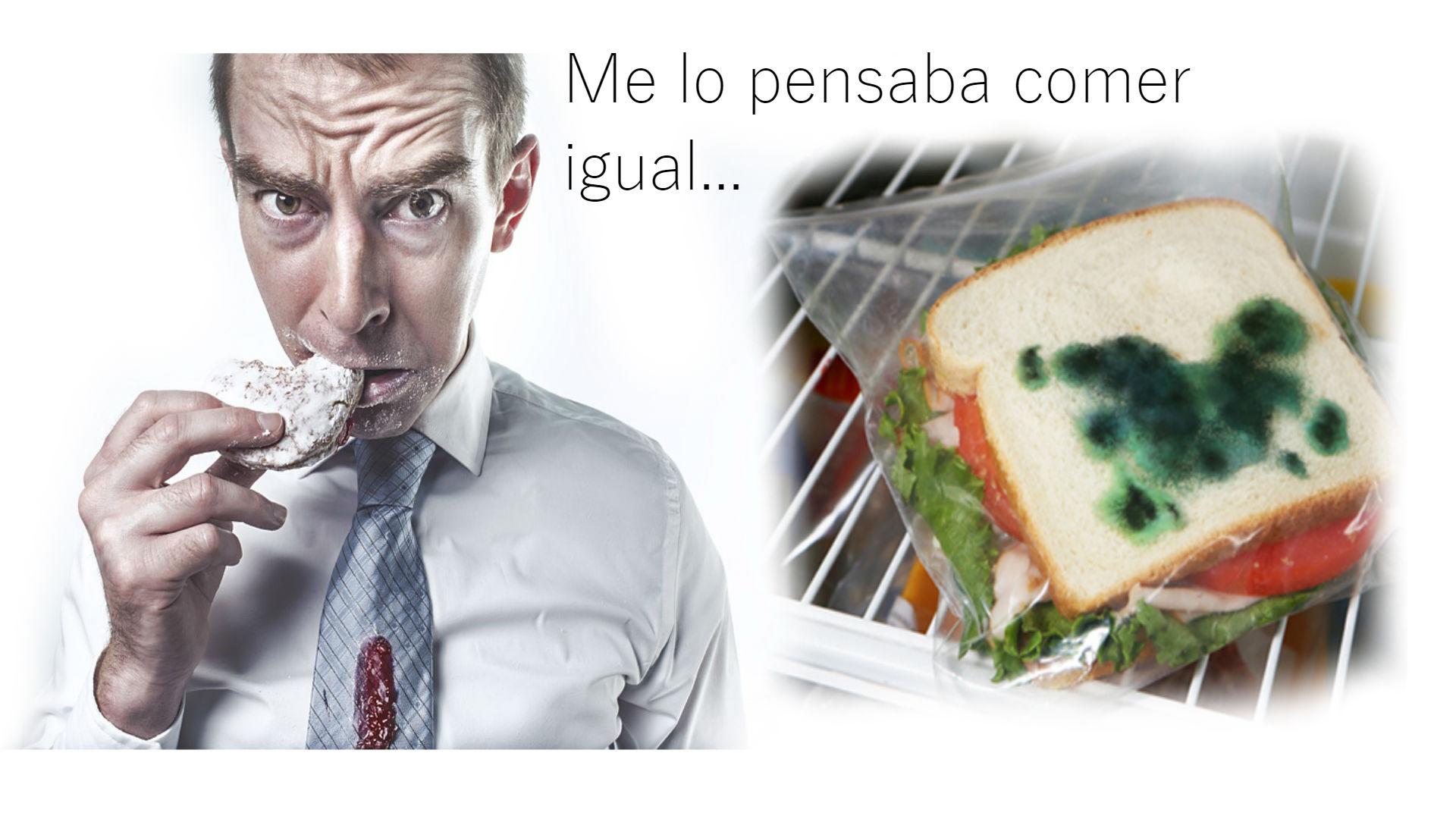 bolsas_mohosas_final.jpg