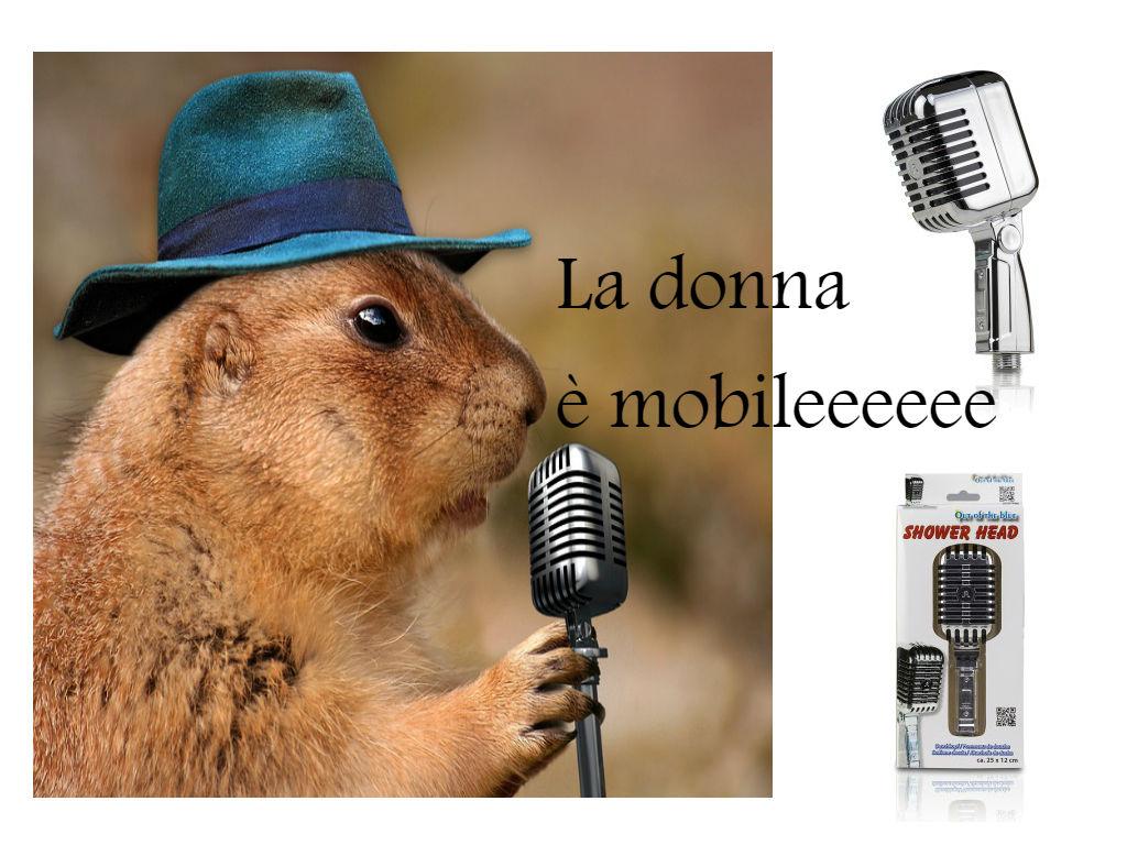 grifo_de_ducha_microfono.jpg
