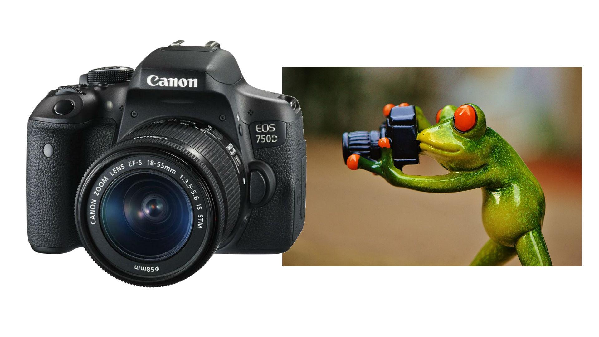 canon_eos_750d.jpg